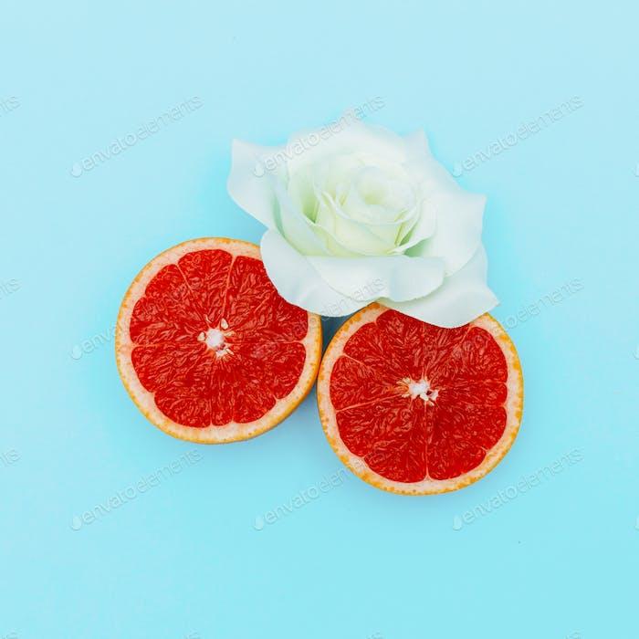 Grapefruit und Rose. Minimale Kunst. Design