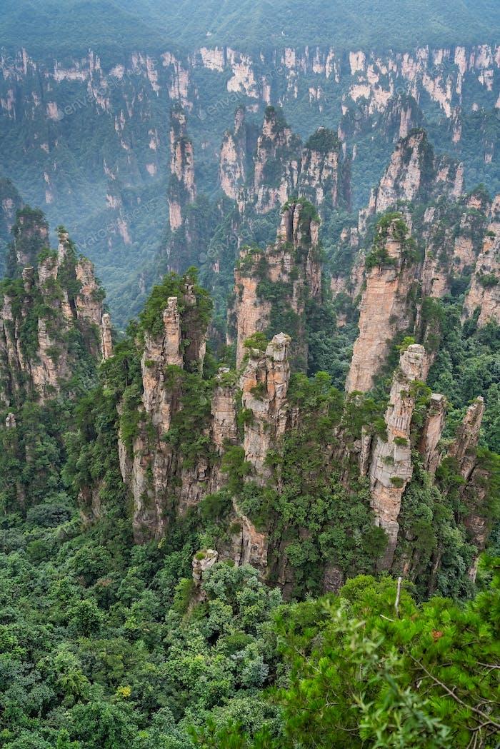 Stone pillars of Tianzi mountains in Zhangjiajie National Park