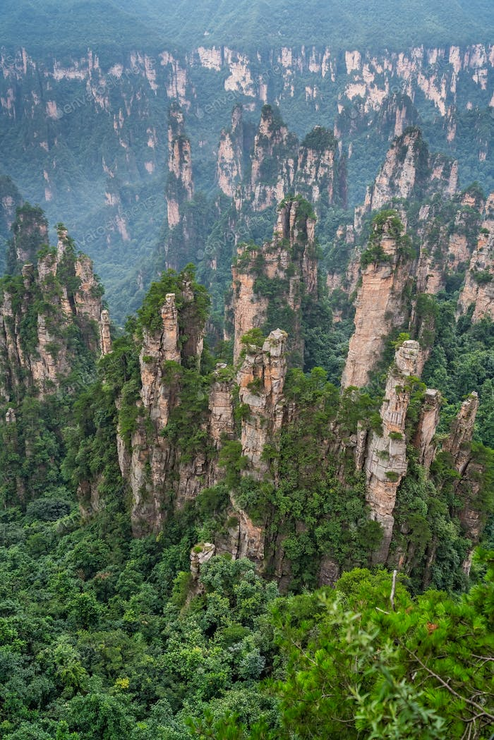 Steinsäulen des Tianzi-Gebirges im Zhangjiajie Nationalpark