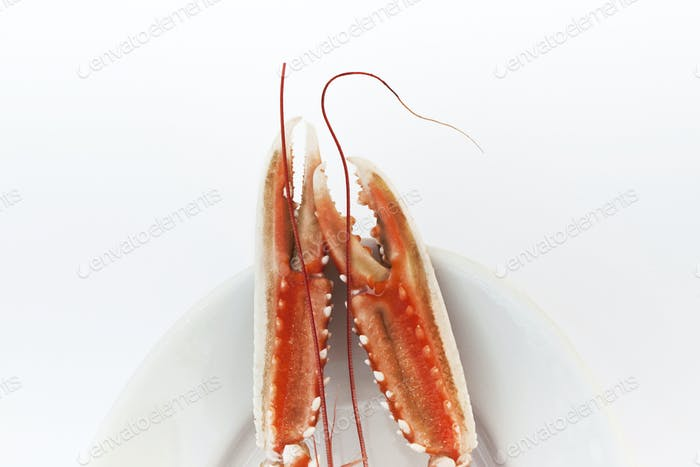 Two lobster claws