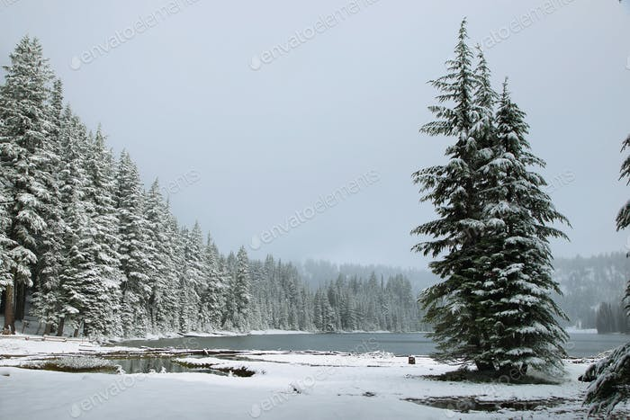 Todd lake in a snowy day on June