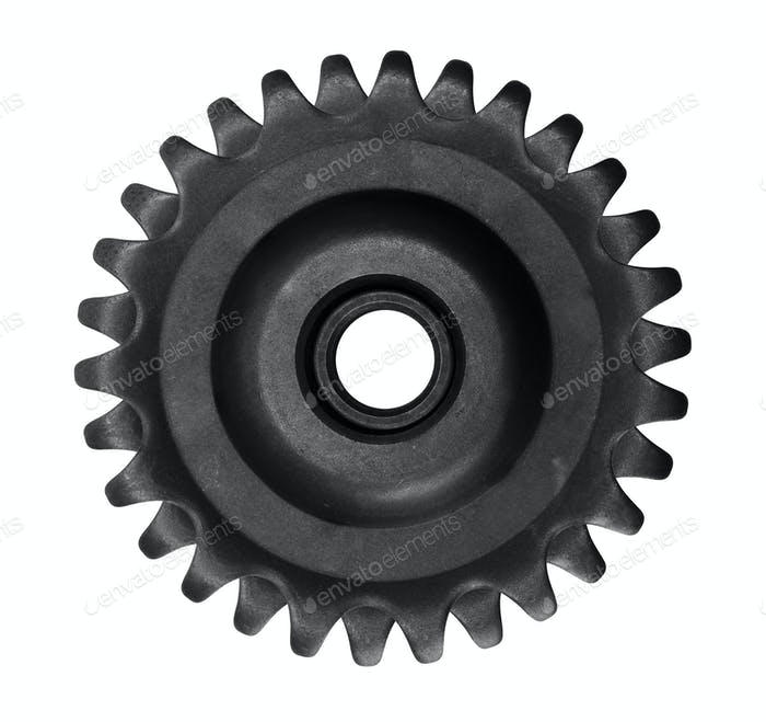 gear isolated on white