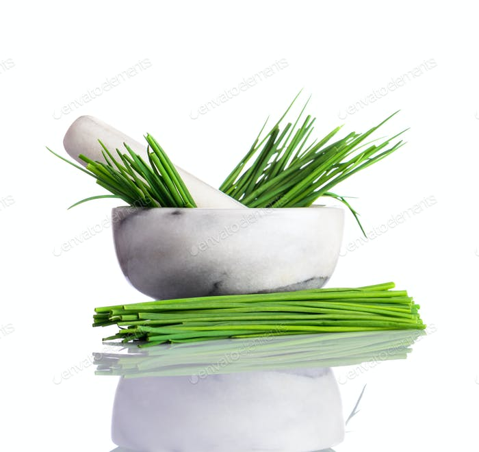 Green Chive in Pestle and Mortar on White
