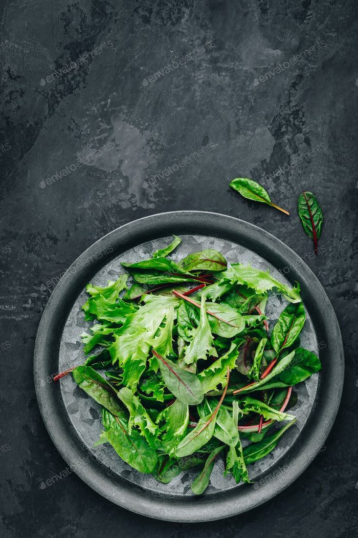 Mix fresh green leaves of lettuce for salad on a dark stone background