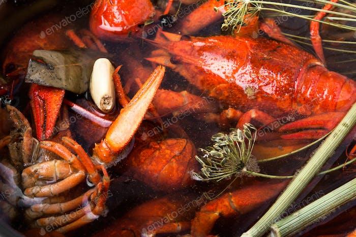 boiled shellfish in pan