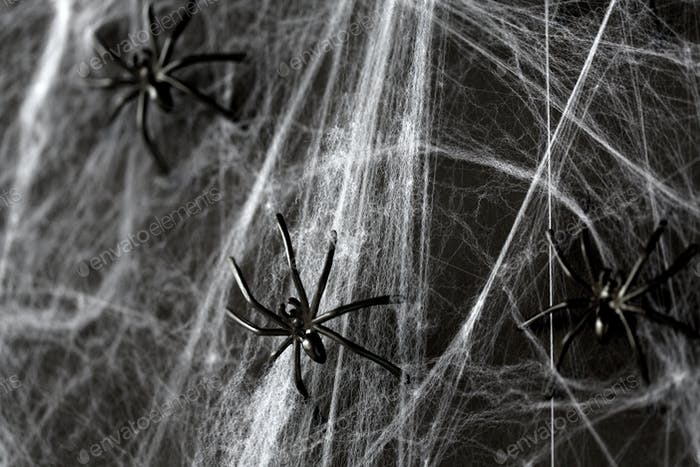 halloween decoration of black toy spiders on web