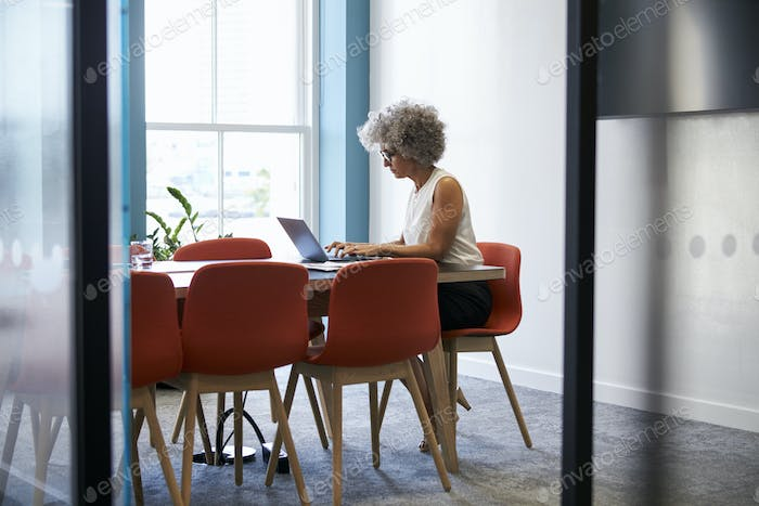 Middle aged woman working alone in office boardroom