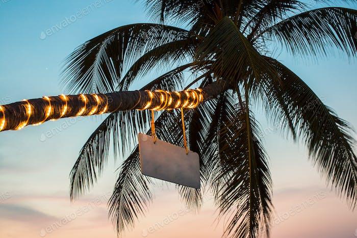 Palm with flashlights on the beach. Thailand.