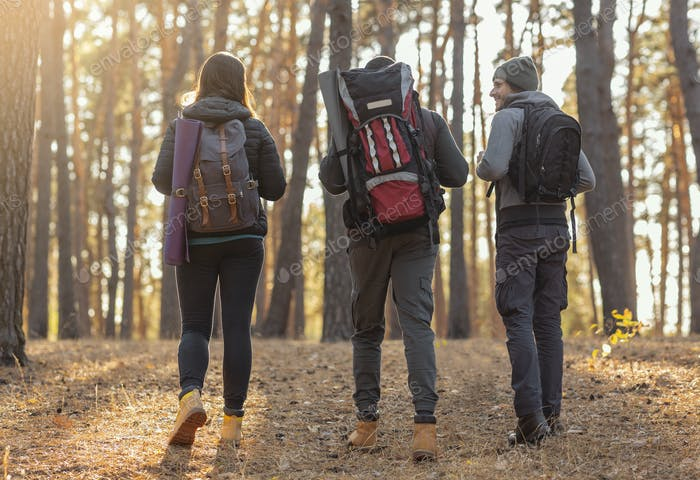 Three friends with their backpacks on hiking trip