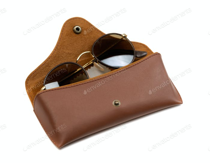 Brown Leather Case sunglasses