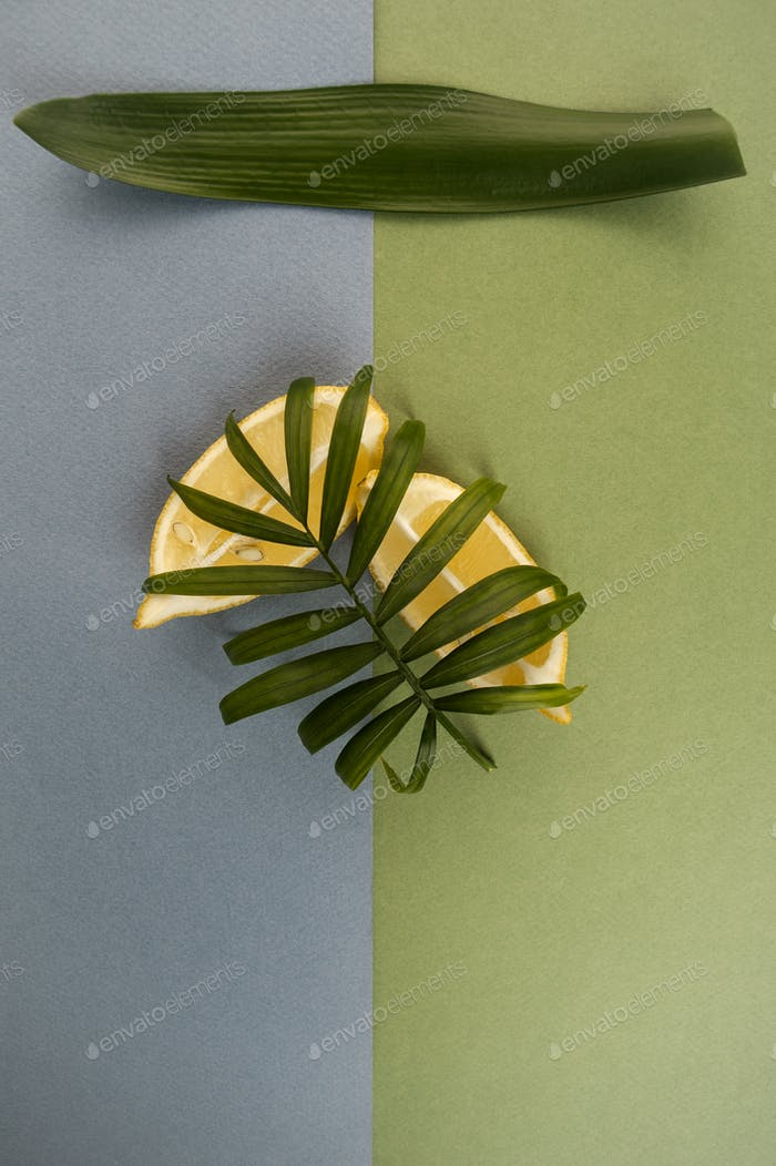 Aesthetic composition with two slices of limonoma and green leav