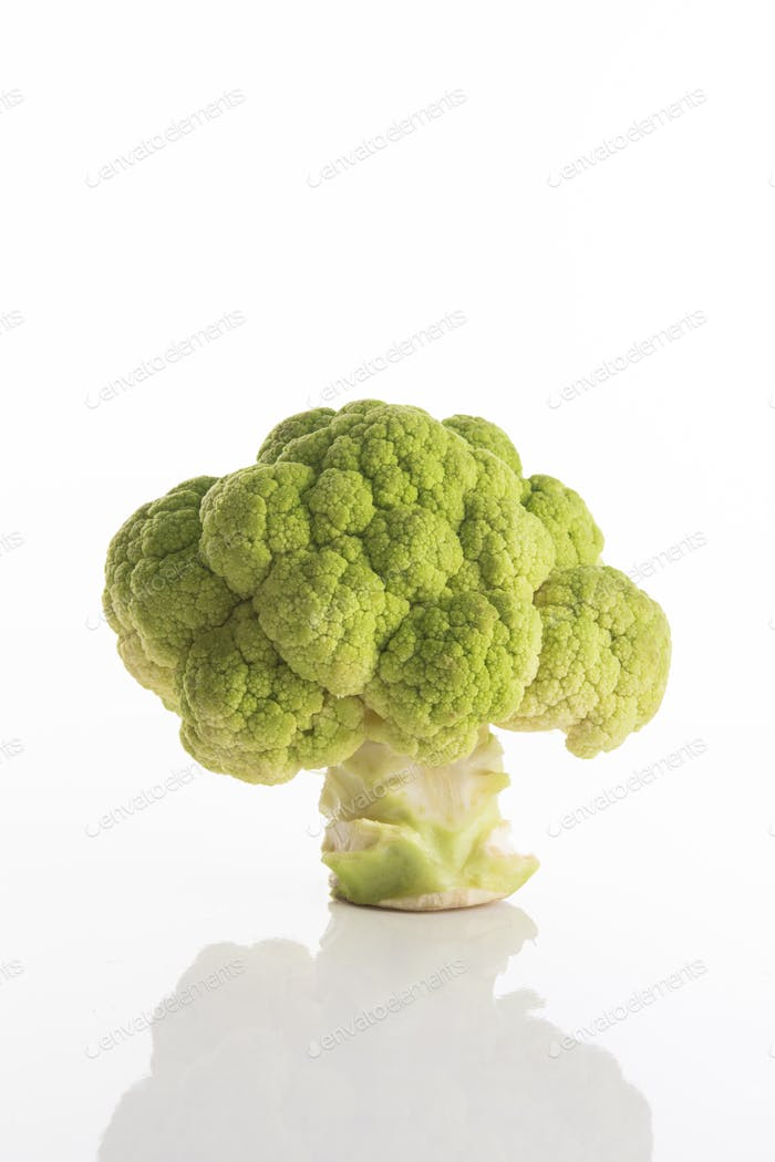 Fresh green broccoli without leaves on a white surface with white background