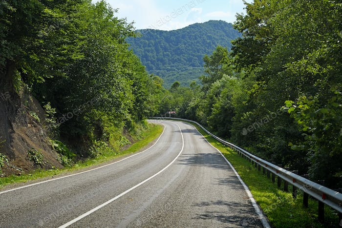 Road in green mountain forest