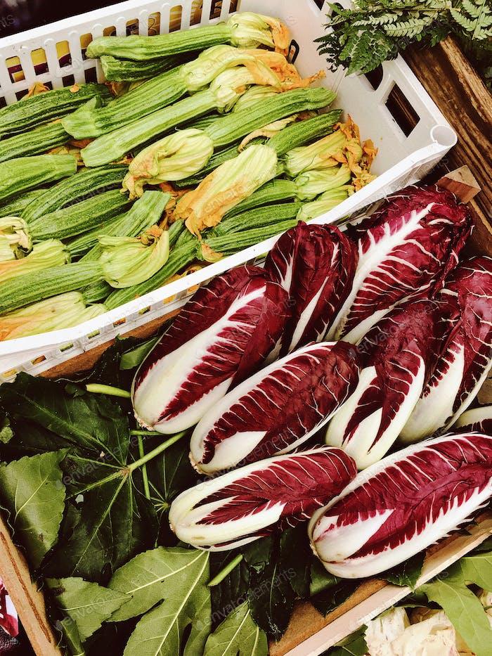 zucchini and radicchio