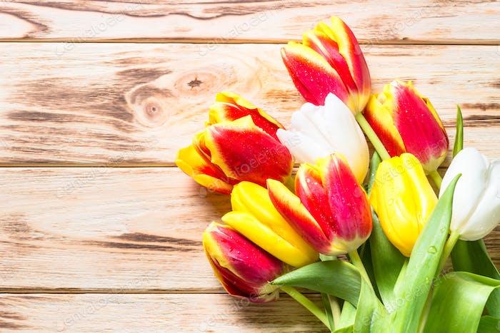 Frühlings-Blumen-Hintergrund oder Grußkarte.