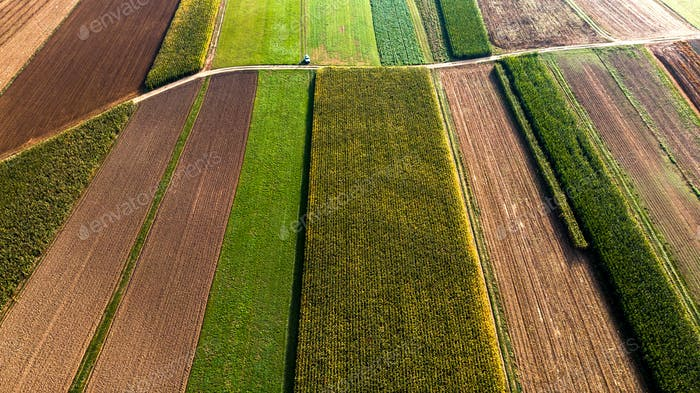 Colorful Countryside Farm Fields. Cultivated Soil with Crops. Ae