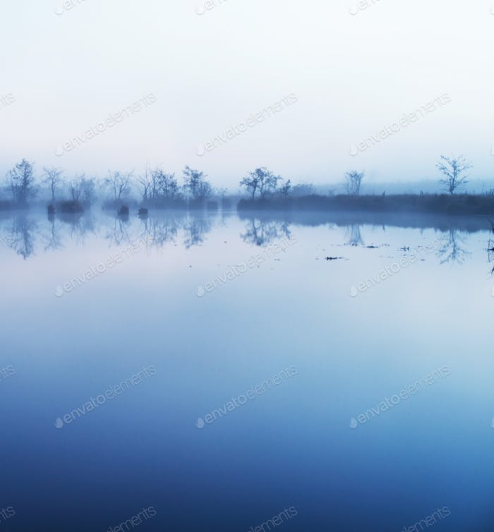 fog in the water