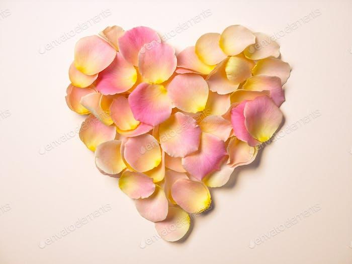rose petals heart shape