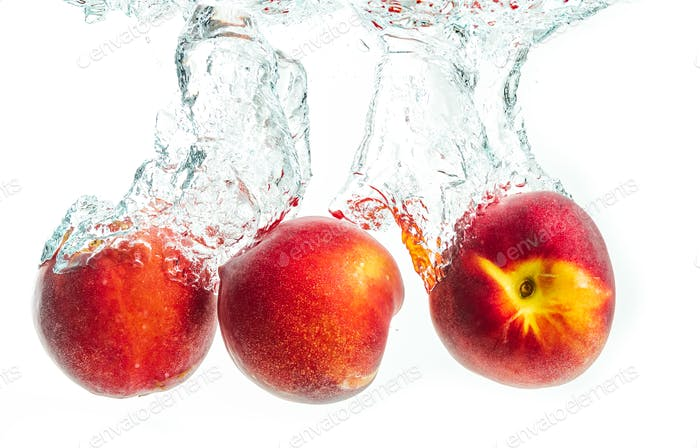 Nectarine fruits splashing into water and sinking with air bubbles isolated on white background