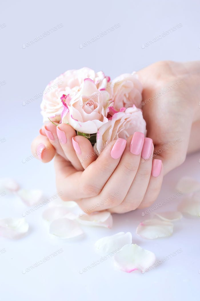 Hands of a woman with pink manicure on nails and roses against w