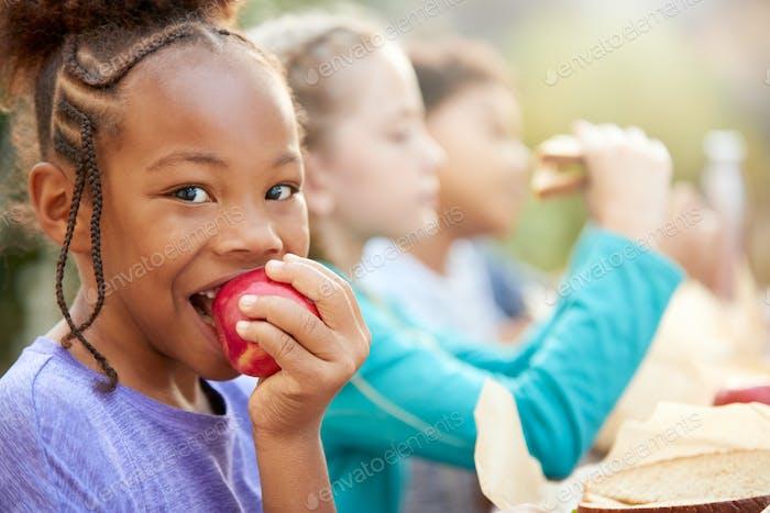 Porträt von Mädchen mit Freunden Essen Gesunde Picknick am Outdoor-Tisch in Landschaft