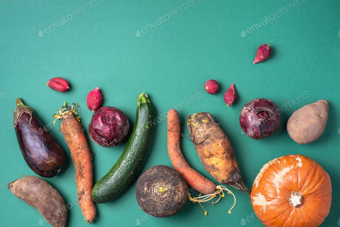 Trendy ugly organic vegetables. Assortment of fresh eggplant, onion, carrot, zucchini on green