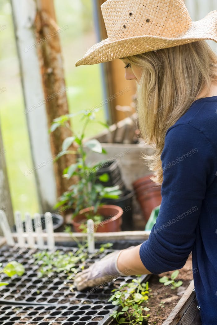 Pretty blonde gardening in greenhouse at home in the garden