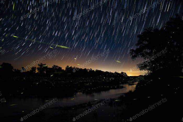 A trail of fireflies at dusk above a river