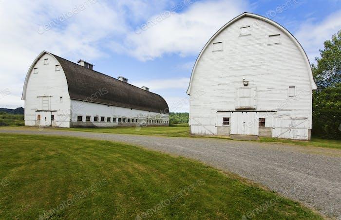 54114,Old barns on farm, Olympia, Washington, United States