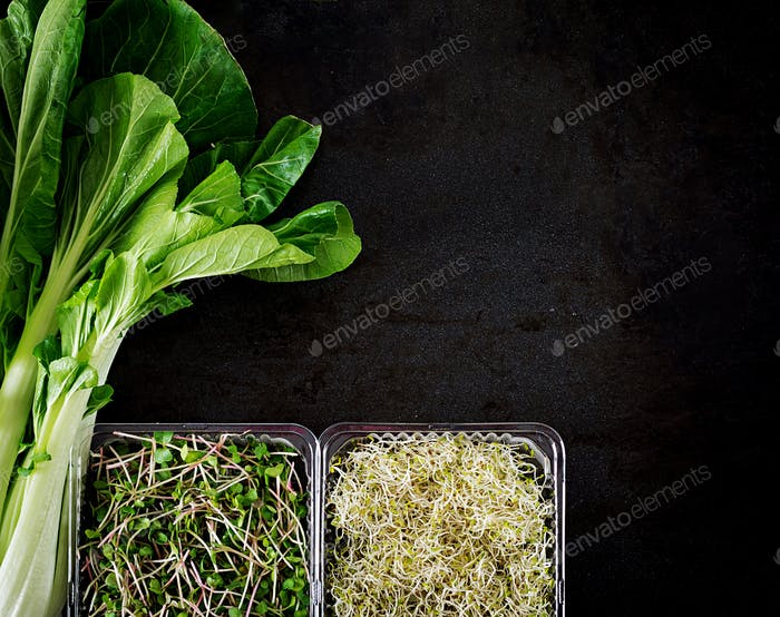 Bok choy or Chinese-cabbage and micro greens on black table. Pak choi. Top view