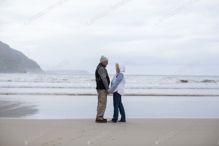 Senior couple standing with holding hands and looking at each other
