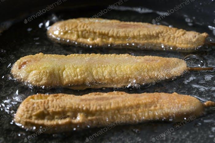Corn Hunde