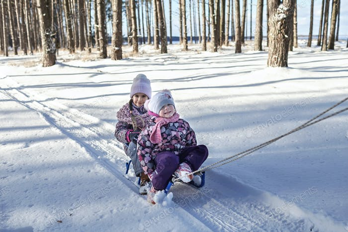 Kids having fun and riding the sledge in winter snowy forest, enjoy seasonal outdoor activities