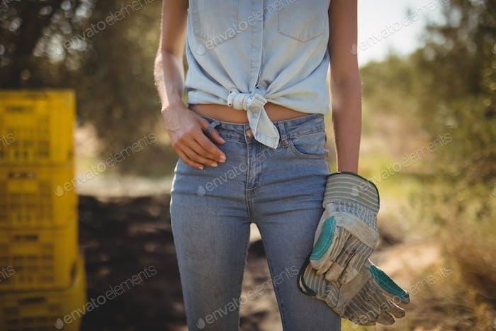 Mitte Teil der Frau mit Handschuhen stehend auf Olivenbauernhof