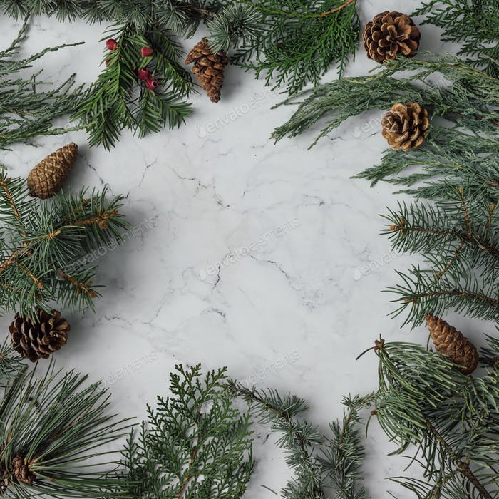Creative arrangement of Christmas winter foliage. Holiday background. Flat lay.