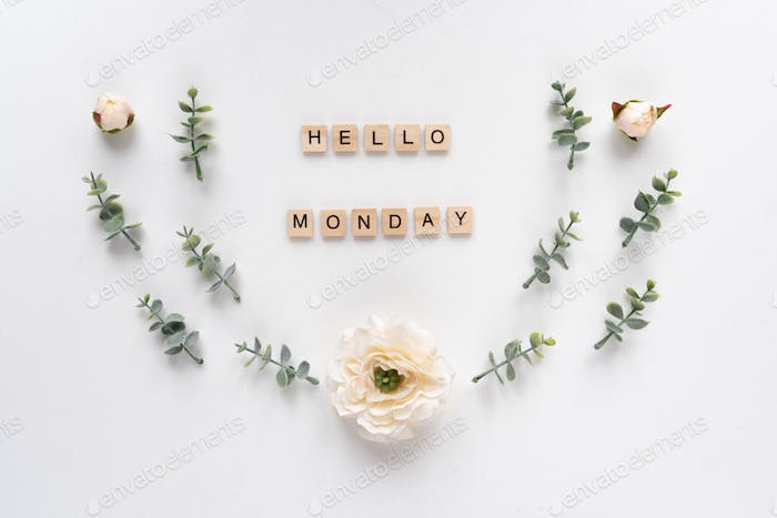 Hello Monday words on white marble background