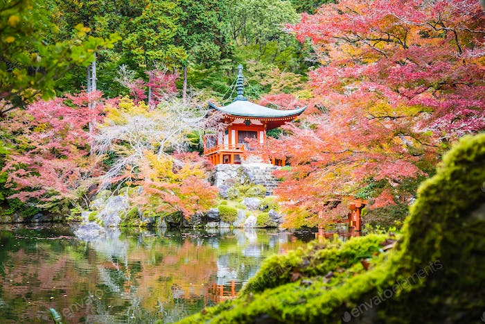 Beautiful Daigoji temple with colorful tree and leaf in autumn s