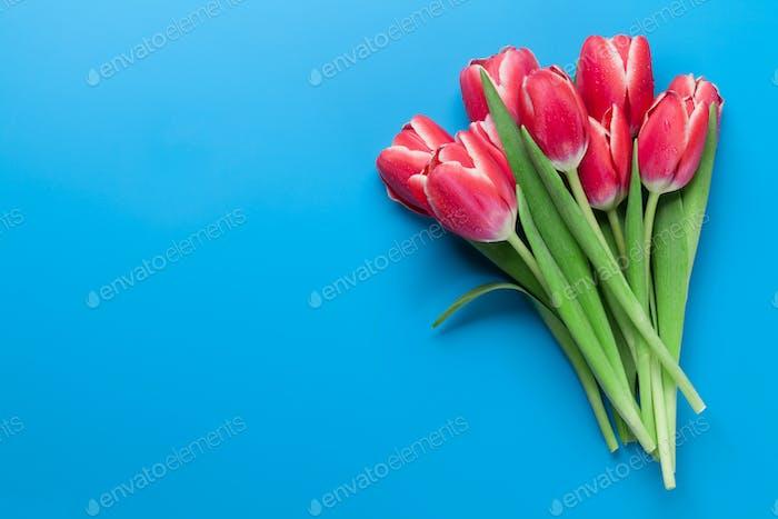 Rote Tulpe Blumen Blumenstrauß