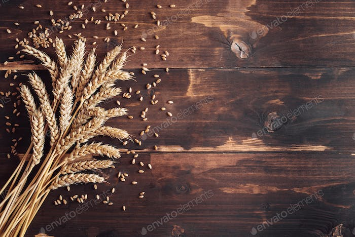 Ripe wheat eras on distressed wooden background