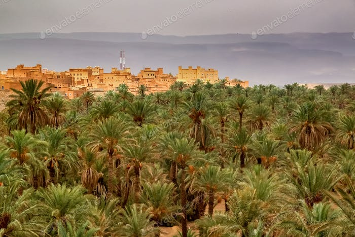 Kasbah in Draa Valley in Morocco