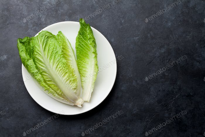 Romaine lettuce salad