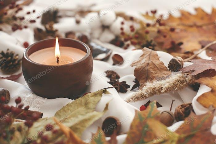 Hallo Herbst, gemütliches inspirierendes Bild. Herbststimmung.