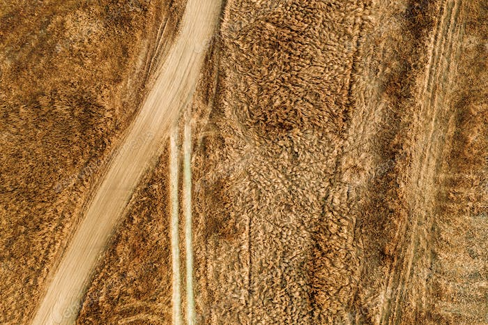 Aerial view of dusty dirt road through grassy plain landscape