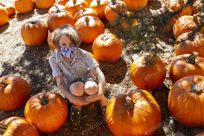 Young boy in pumpkin patch.