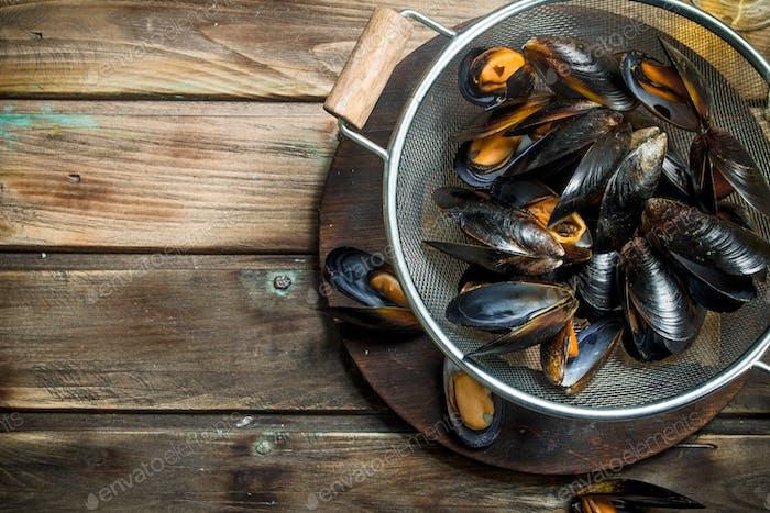 Fresh seafood clams.