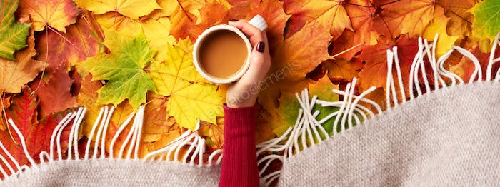 Autumn flat lay. Female hands with cup of coffee over colorful maple leaves background. Top view