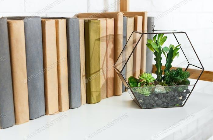 Green interior decor concept