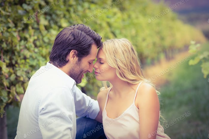 Young happy couple having a romantic time in the grape fields
