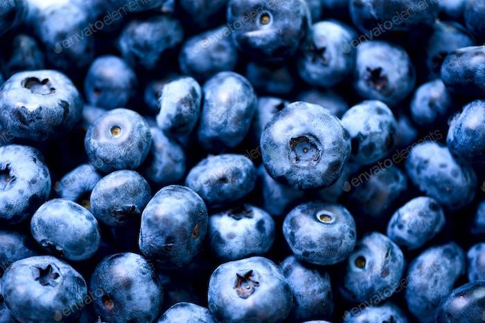 Frische Blaubeeren Hintergrund mit Kopierraum für Ihren Text. Borte Design Vegan und vegetarisch