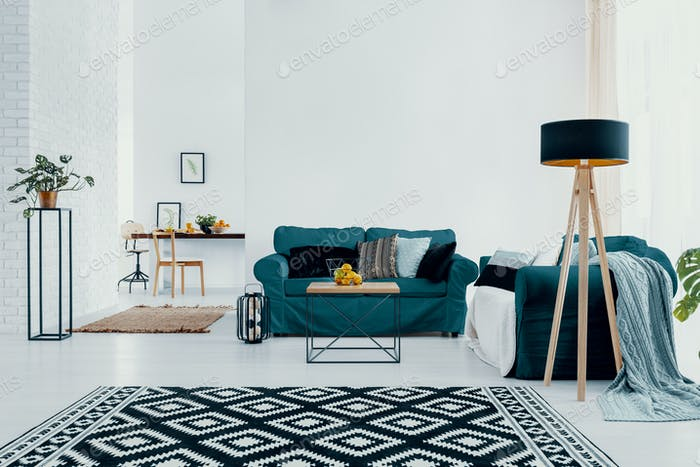 Patterned carpet and plant in white apartment interior with lamp